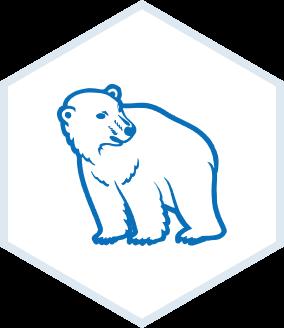 Joensuun Jääkarhut
